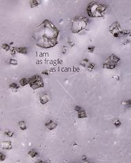 moodswing_fragile